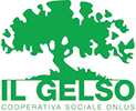Cooperativa il gelso